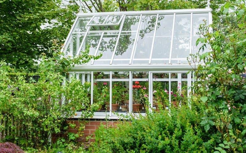 la ventilation de la serre est importante pour limiter les maladies et assurer un bon développement de la plante