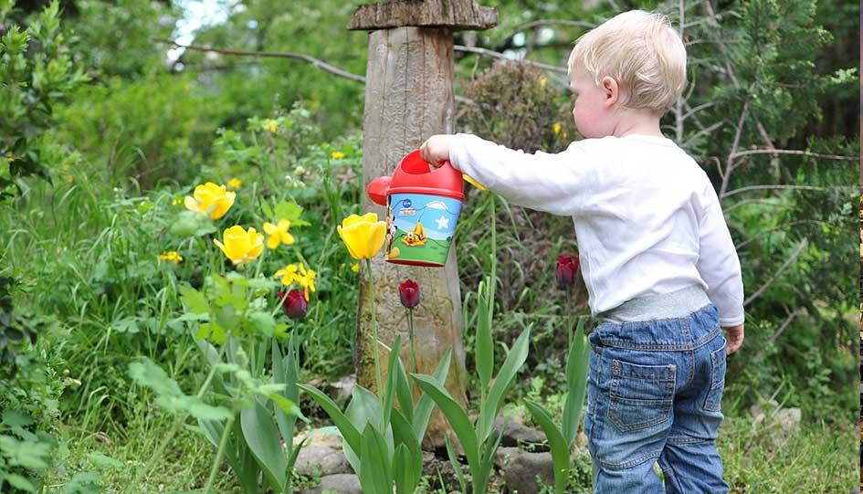arrosage raisonné au jardin