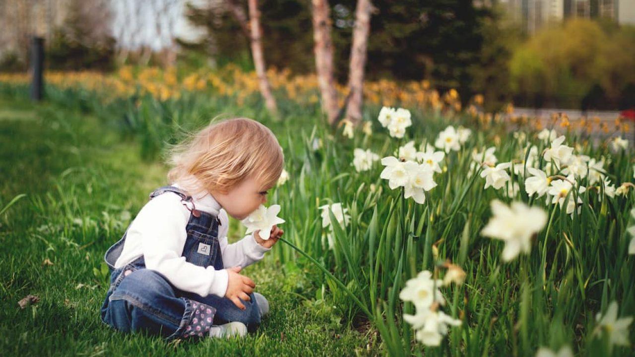 Initiation-au-jardinage-les-activités-que-les-enfants-vont-adorer