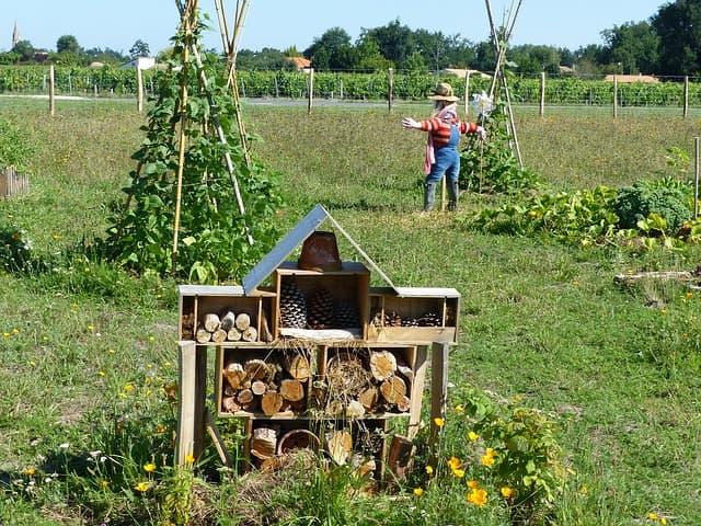 hôtel à insectes en permaculture